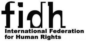 FIDH eng logo